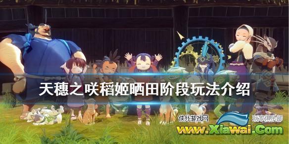 《天穗之咲稻姬》晒田阶段怎么玩 晒田阶段玩法介绍