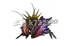 怪物猎人x矛碎盾蟹资料